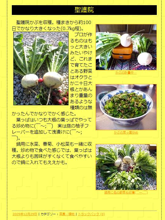 2008年~ 神戸の実家で家庭菜園を楽しむ