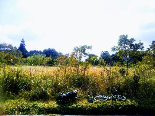 ◆【ザワワ村】用地取得完了でザワワ村開拓プロジェクトが本格始動♪