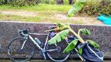 【インプレ・レビュー】折畳式サイクルトレーラー Travoy